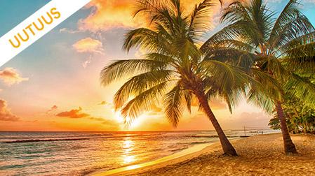 Karibian uutuudet