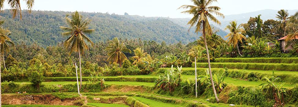 Bali, Indonesia – Matkat Tjäreborgilta